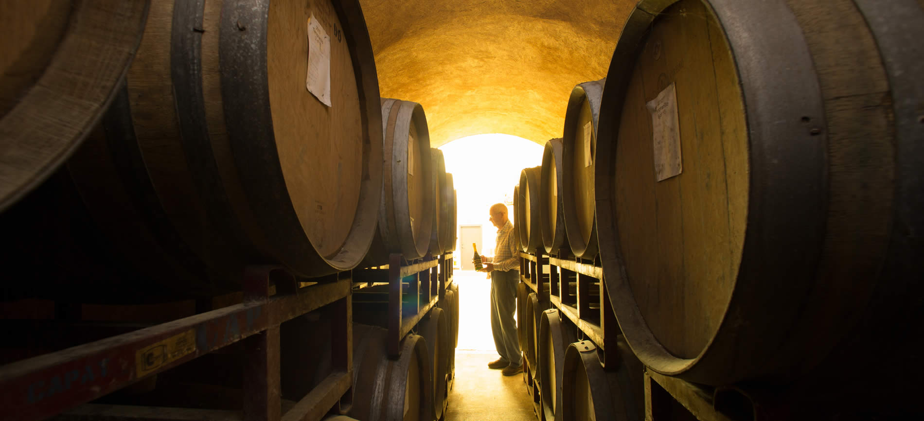 napa valley best wine tours and wine tasting places